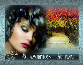 Metamorphosis Autumnal