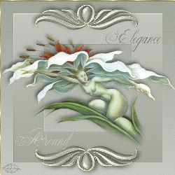 Elegance Around