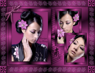Japan Lady